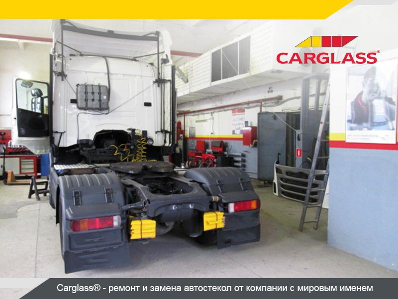 lory.jpg